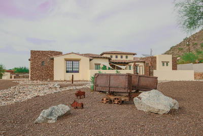Peoria Single Family Home For Sale: 9134 W Happy Valley Road