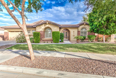 Chandler Single Family Home For Sale: 639 W Sparrow Place