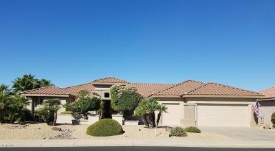 Surprise Single Family Home For Sale: 17930 N Saddle Ridge Drive