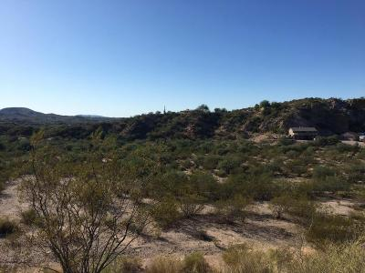 Wickenburg AZ Residential Lots & Land For Sale: $76,000