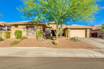 Phoenix Single Family Home For Sale: 40331 N Lytham Way