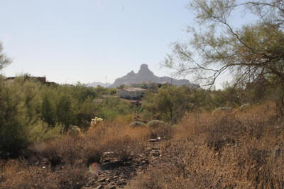 Fountain Hills Residential Lots & Land For Sale: 9310 N Powderhorn Drive N