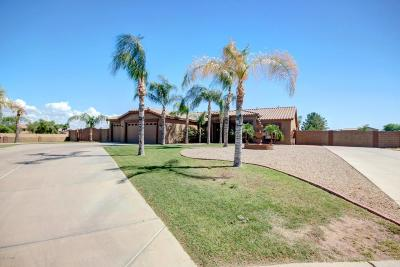 San Tan Valley Single Family Home For Sale: 253 E Rosebud Drive