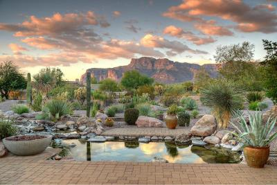 Superstition Mountain, Superstition Mountain - Ponderosa Village, Superstition Mountain Country Club, Superstition Mountain Golf & Cc, Superstition Mountain Golf And Country Club, Superstition Mountain, Casitas At First Water Single Family Home For Sale: 6330 E Flat Iron Loop