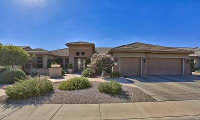 Sun City Grand Single Family Home For Sale: 17424 N Stone Haven Drive