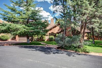 Sedona Single Family Home For Sale: 155 Canyon Shadows Drive