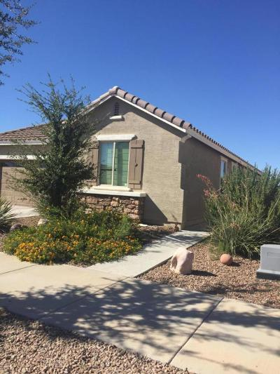 Queen Creek Single Family Home For Sale: 21140 E Cherrywood Drive