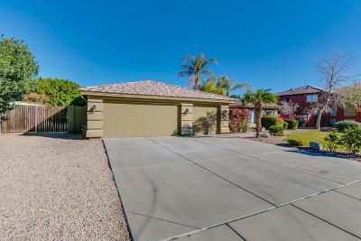 Peoria Single Family Home For Sale: 8154 W Cielo Grande