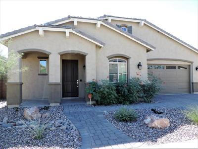 Queen Creek Single Family Home For Sale: 20281 E Raven Drive