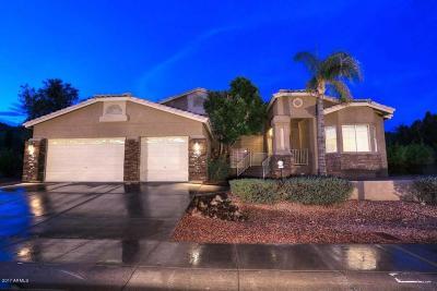Glendale Single Family Home For Sale: 5340 W Melinda Lane