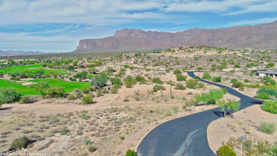 Superstition Mountain Residential Lots & Land For Sale: 3506 S Goldmine Trail