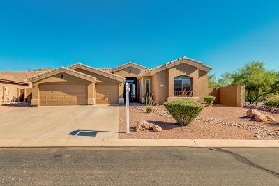 Gold Canyon Single Family Home For Sale: 8211 E Apache Plumb Drive
