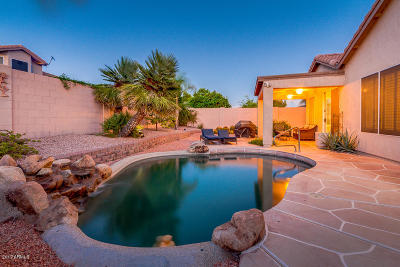 Cave Creek Single Family Home For Sale: 4280 E Molly Lane
