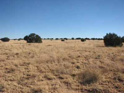 Heber AZ Residential Lots & Land For Sale: $26,900