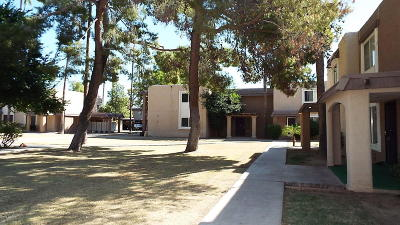 Phoenix Multi Family Home For Sale: 7126 19th Avenue #203