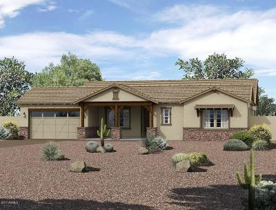 Gilbert Single Family Home For Sale: 3120 E Boot Track Trail