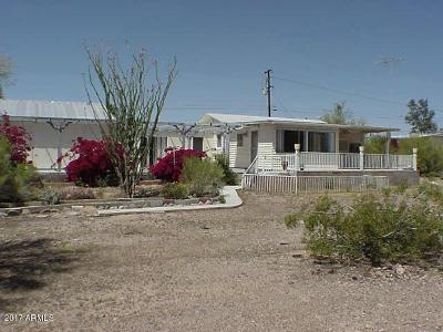 Apache Junction Single Family Home For Sale: 664 N Hilton Road