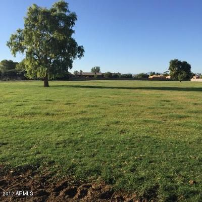 Glendale Residential Lots & Land For Sale: 8039 W Northern Avenue