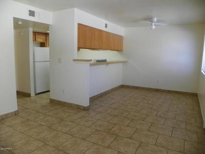 Phoenix Apartment For Sale: 18202 N Cave Creek Road #145