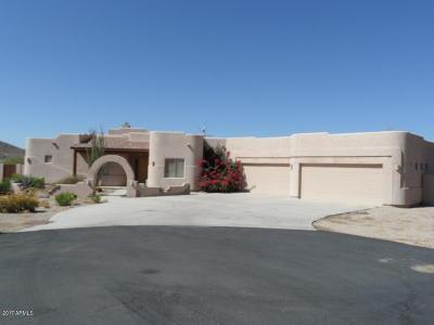 Phoenix Single Family Home For Sale: 2742 W Fernwood Drive