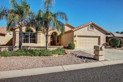 Goodyear Single Family Home UCB (Under Contract-Backups): 15430 W Amelia Drive