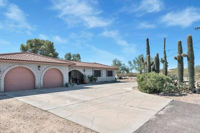 Phoenix Single Family Home For Sale: 2009 E Tonopah Drive