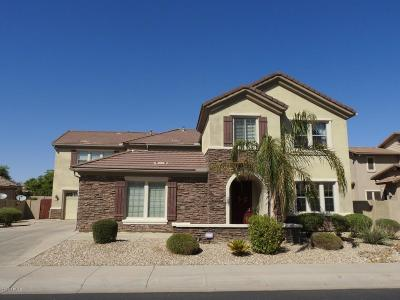 Goodyear Single Family Home For Sale: 15896 W Westview Drive