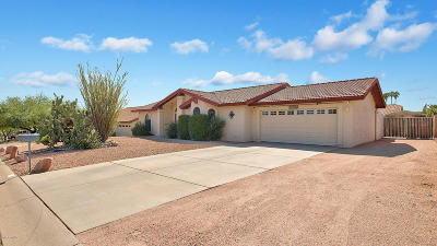 Fountain Hills Single Family Home For Sale: 17135 E Calaveras Avenue