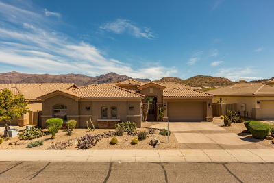 Gold Canyon Single Family Home For Sale: 4515 S Salvia Drive