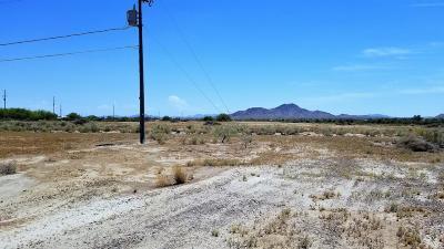 Buckeye Residential Lots & Land For Sale: W Elliot Road