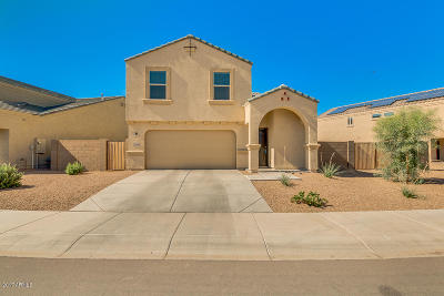 Maricopa County, Pinal County Single Family Home For Sale: 23992 N Brittlebush Way