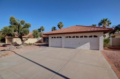 Single Family Home For Sale: 8955 E Voltaire Drive