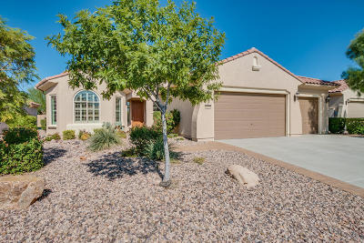 Florence Single Family Home For Sale: 6466 W Willow Way