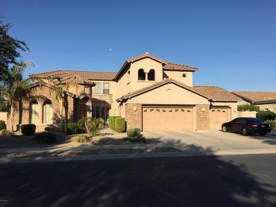Litchfield Park Single Family Home For Sale: 64 N Vineyard Lane