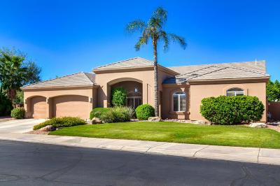 Scottsdale Single Family Home For Sale: 12234 N 91st Street