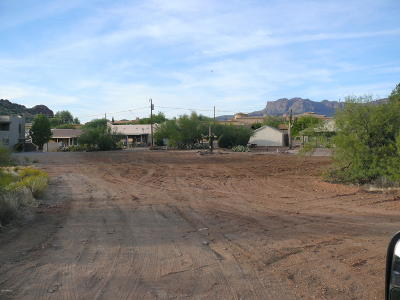 Gold Canyon Residential Lots & Land For Sale: 5562 S Estrella Road