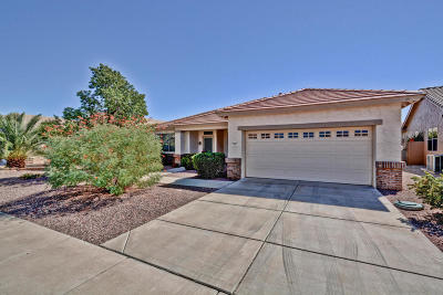 Surprise Single Family Home For Sale: 17687 N Coconino Drive