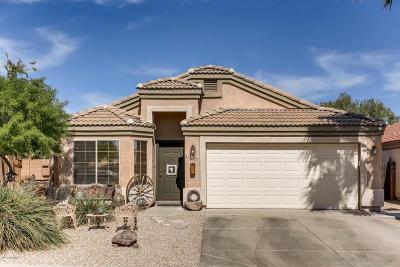 Surprise Single Family Home For Sale: 16240 W Mauna Loa Lane