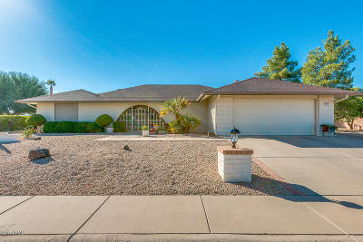 Sun City West Single Family Home For Sale: 21202 N 132nd Drive