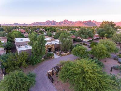 Scottsdale Single Family Home For Sale: 10010 E Cholla Street