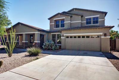 Gilbert Single Family Home For Sale: 3301 E Anika Drive