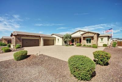 Chandler, Gilbert, Mesa, Tempe Single Family Home For Sale: 3110 E Fruitvale Court