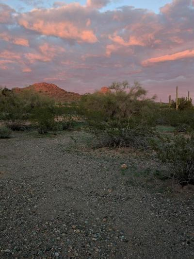 Residential Lots & Land For Sale: 280xx N 145th Avenue