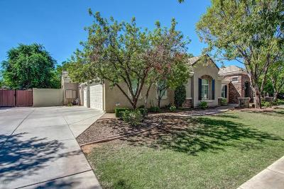 Gilbert Single Family Home For Sale: 3053 E Vaughn Avenue