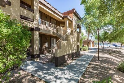 Apartment For Sale: 10136 E Southern Avenue #2057