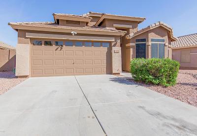 Gilbert Single Family Home For Sale: 3255 S Loback Lane
