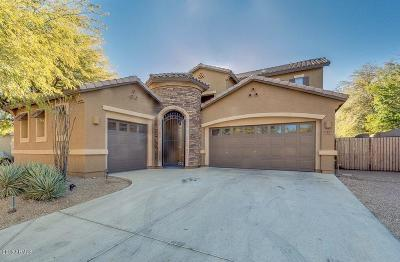 Peoria Single Family Home For Sale: 8455 W Desert Elm Lane
