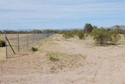Residential Lots & Land For Sale: 16934 W Dale Lane