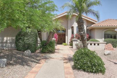 Rio Verde Single Family Home For Sale: 18926 E McDowell Mountain Drive