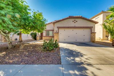 Surprise Single Family Home For Sale: 13263 W Ventura Street